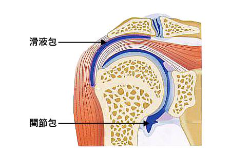 注射 肩 酸 ヒアルロン